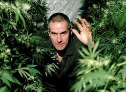 Cannabis dokumentärfilm BBC