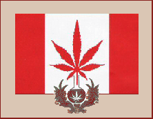 https://www.cannabis.se/images/CanadianMedCanFlag.png